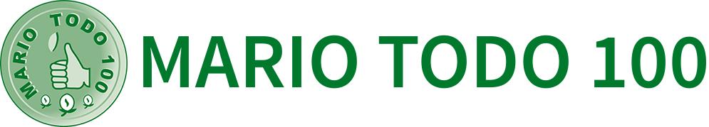 Mario Todo 100